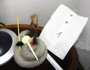 tag1-polarfuchsspindeln